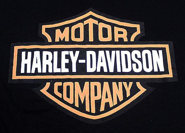 Imagem de Camiseta Babylook Harley Davidson Logo Moto Rock Feminino Blusa M2