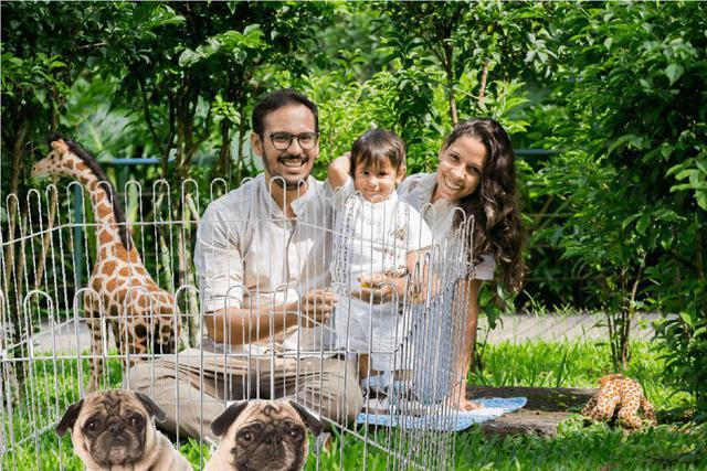 Imagem de Cercado Cercadinho Para Cachorro Coelho Dobrável Portátil