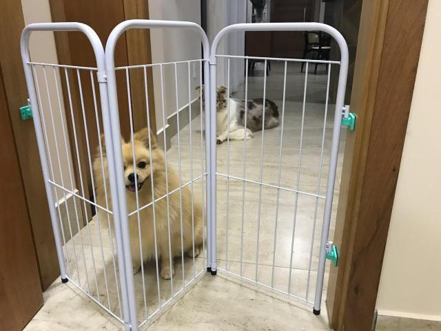 Imagem de Cercado Pet Delimitador De Espaço Portátil Para Cachorros