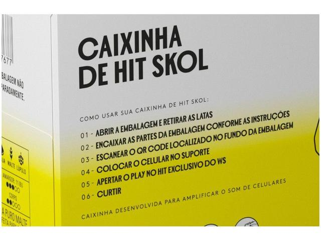 Imagem de Cerveja Skol Caixinha de Hit Puro Malte