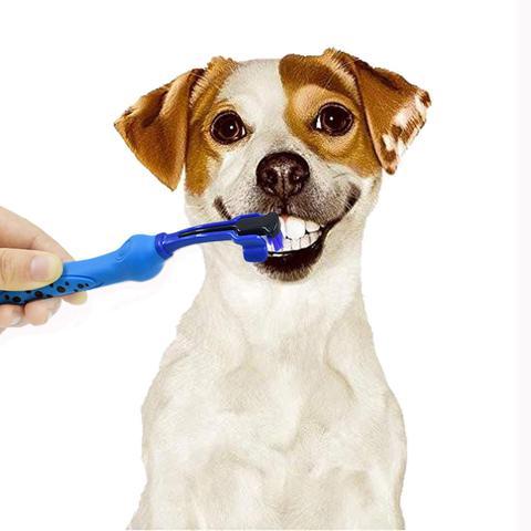 Imagem de Escova De Dente Cachorro Dog Pet Três Cabeça Escova Limpeza