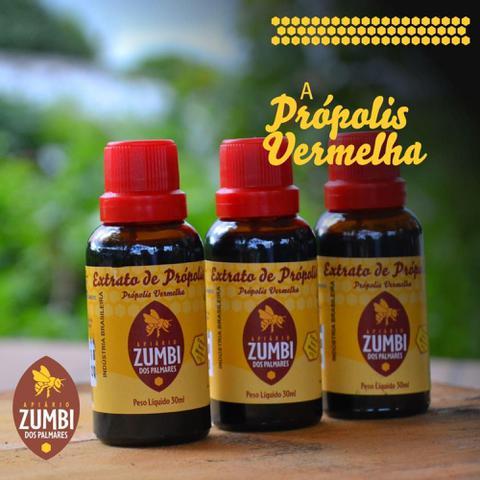 Imagem de Extrato de Própolis Vermelha 30 ml - Apiário Zumbi dos Palmares