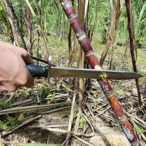 Imagem de Faca Baioneta Com Lâmina Reta Punhal De Aço Inoxidável Ntk