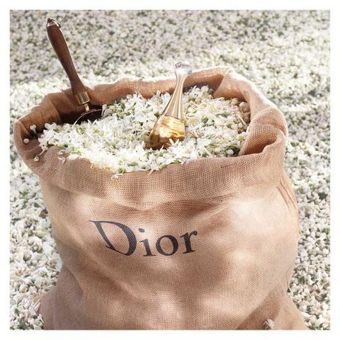 Imagem de J'adore Dior - Perfume Feminino - Eau de Parfum