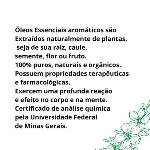 Imagem de Kit 10 Óleos Essenciais Naturais Via Aroma Original 10ml Aromaterapia
