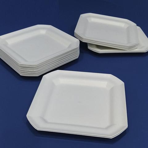 Imagem de Kit 10 Pratos Rasos Plástico Quadrado 24x24cm para Salada Lanche Cozinha Festa Buffet Cor: Branca