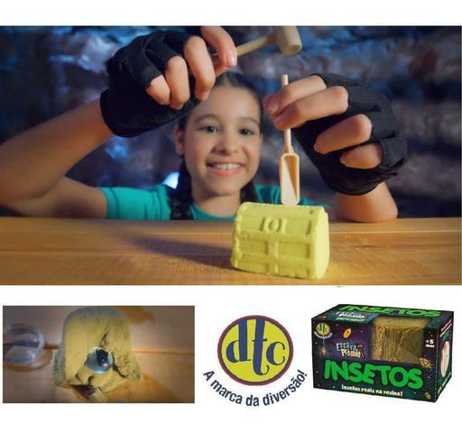 Imagem de Kit com 02 Escava Prêmio Insetos Reais Na Resina 4997 - DTC