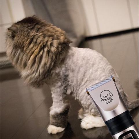 Imagem de Kit Máquina de Tosa Cães Gatos Cachorro Cortar Pelos Profissional Corta Tosar Pet com Cortador de Unha Alicante de Unha