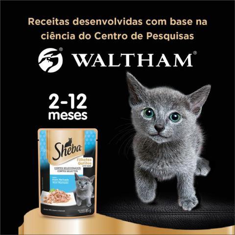 Imagem de Kit Ração Úmida Sheba Sachê Cortes Selecionados Sabor Atum Marinado Para Gatos Filhotes 20x85g