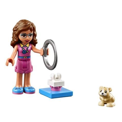 Imagem de Lego Friends - 41383 - Playground Do Hamster Da Olivia