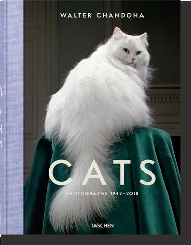 Imagem de Livro - Cats - Photographs 1942-2018