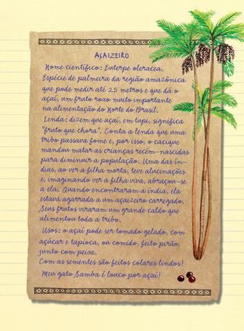 Imagem de Livro - Diário de Pilar na Amazônia
