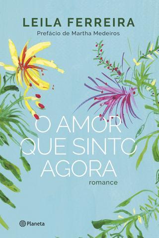 Imagem de Livro - O amor que sinto agora