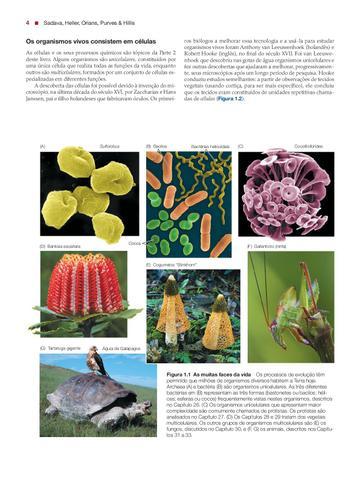 Imagem de Livro - Vida: A Ciência da Biologia