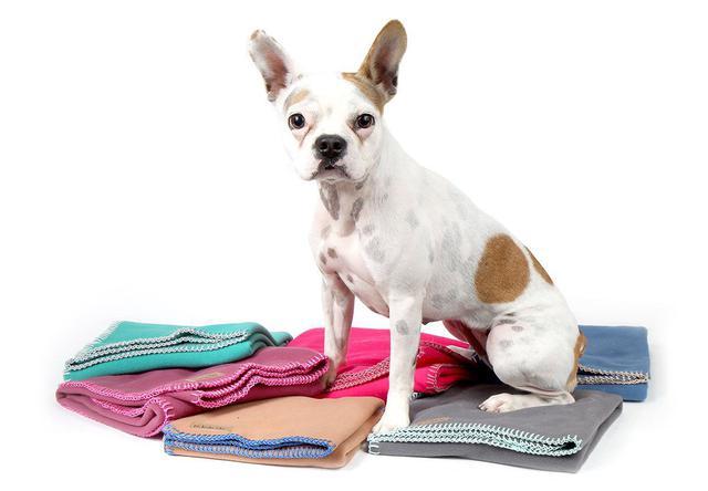 Imagem de Manta Soft para Cachorro e Gato Pet - P - Pequeno - Bordô - Bichinho Chic