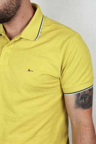 Imagem de Polo Aramis Basic Premium Masculina (Várias Cores)