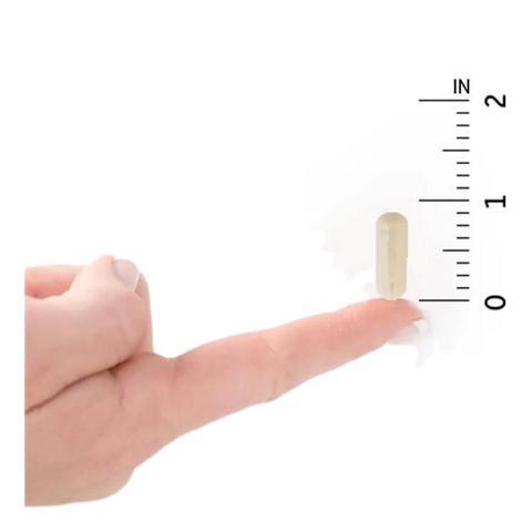 Imagem de Probiótico Para Mulher 50 Bilhões De Ufc 30 Cápsulas