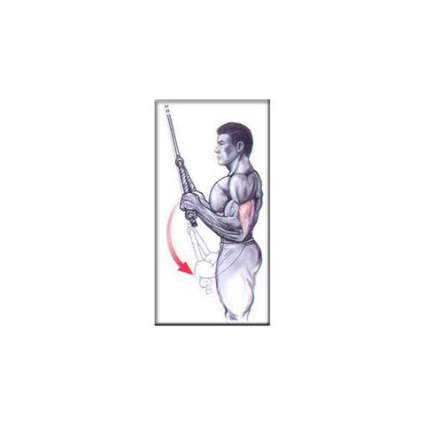 Imagem de Puxador em Corda para Tríceps - LIVEUP LS2251-60