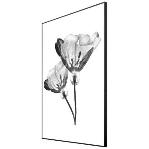 Imagem de Quadro com Moldura Preta Par de Flores Efeito Raio-X 60x80cm