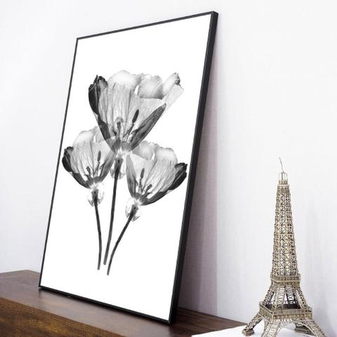 Imagem de Quadro com Moldura Preta Trio de Flores Efeito Raio-X 60x80cm