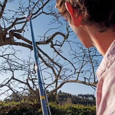 Imagem de Serrote podador para galhos altos com cabo telescópico extensível - Tramontina