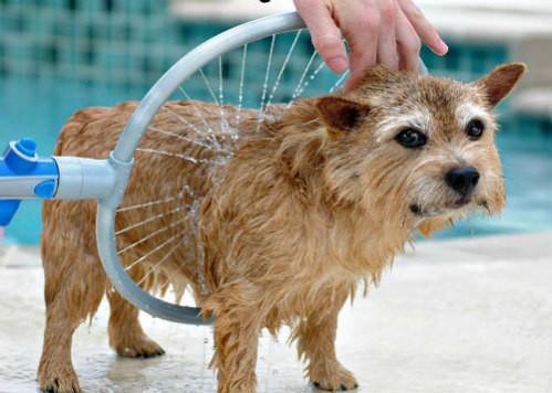 Imagem de Woof Washer 360 Lava Jato Para Banho Cachorros Cao Pets Pratico Petshop (Bsl-lac-1)